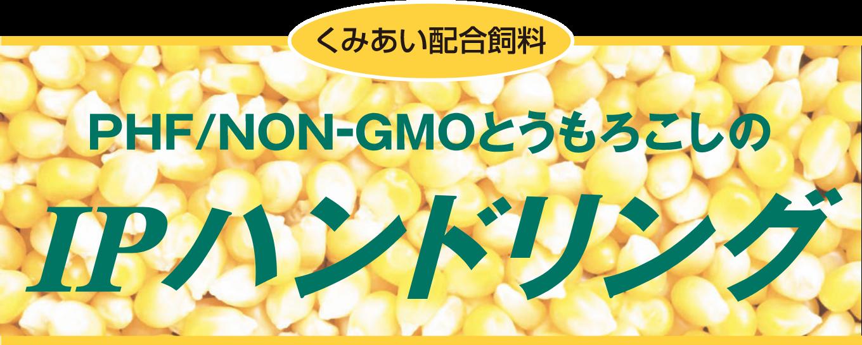 PHF/NON-GMOとうもろこしのIPハンドリング
